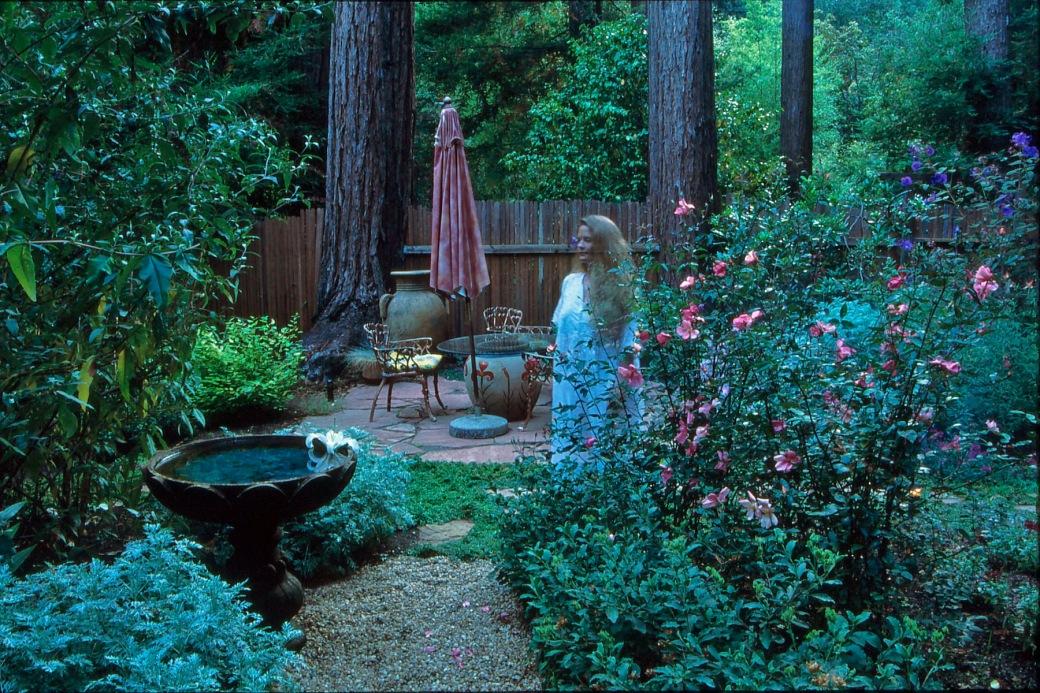 cottage garden 18
