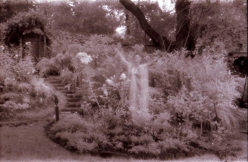 Garden Spirit 1
