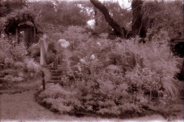 Garden Spirit 5_1024